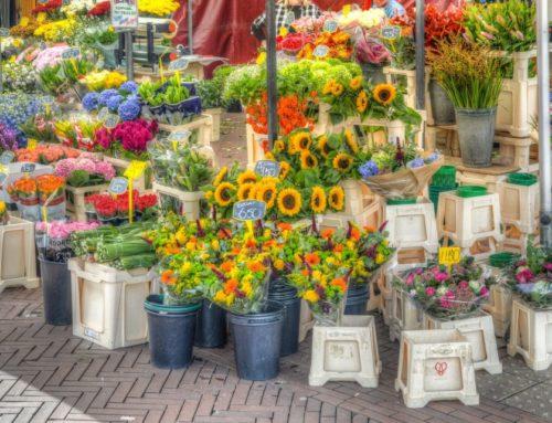 Convocatoria para la concesión de autorizaciones de venta en la temporada de flores en los cementerios