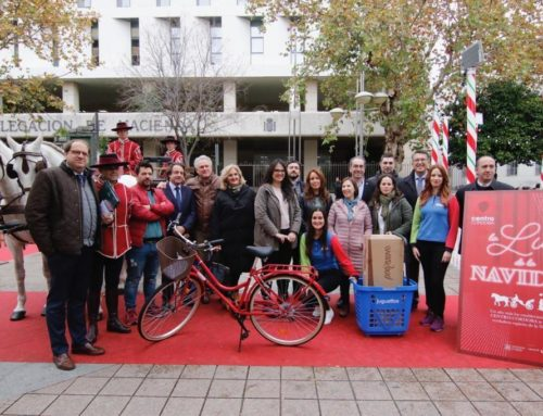 """Presentación de la campaña """"La Luz de la Navidad"""" de Centro Cordoba"""