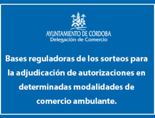 Bases reguladoras para la adjudicación de las autorizaciones de venta mediante sorteo.